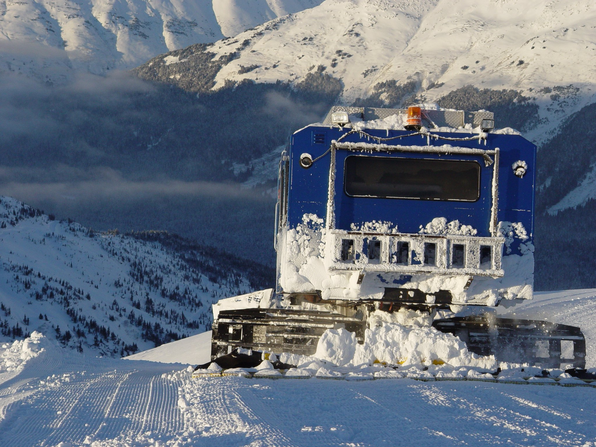 catskiing comes right after heliskiing