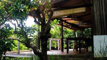 Boa Hills Eco Surf House