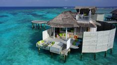 Luxury Maldives Special!
